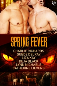 This image has an empty alt attribute; its file name is springfever6x9.jpg