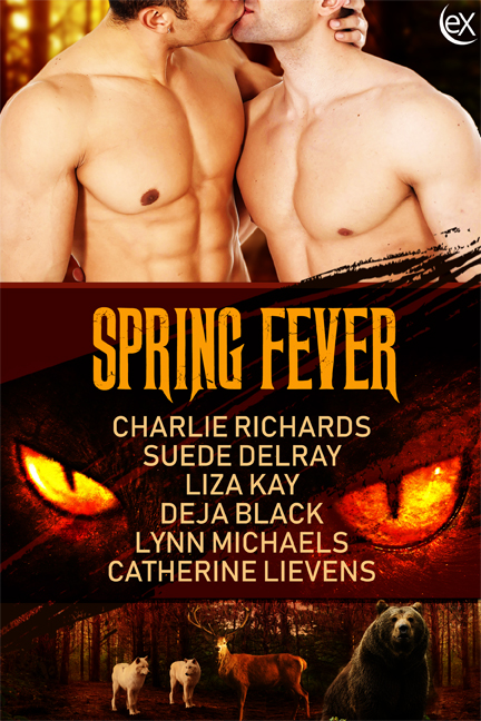 SpringFever6x9
